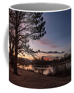 Washington Park Coffee Mug