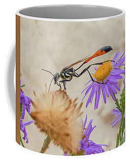 Wasp At White Sands Coffee Mug