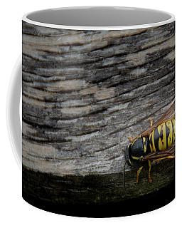 Wasp On Wood Coffee Mug