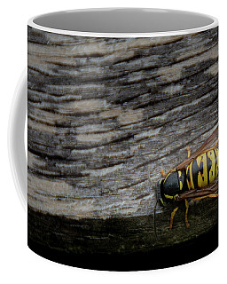 Wasp On Wood Coffee Mug