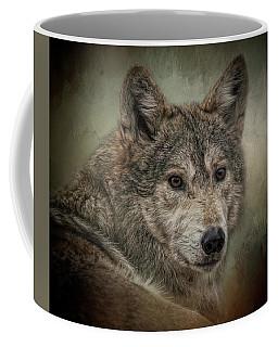 Watchful Coffee Mug