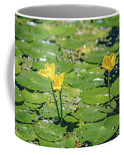 Water Garden Coffee Mug