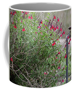 Water In The Garden Coffee Mug