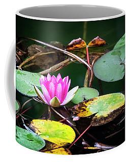 Water Lily #2 Coffee Mug