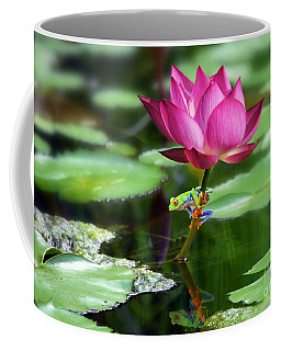 Water Lily And Little Frog Coffee Mug