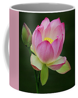Coffee Mug featuring the photograph Water Lily In The Pond by Howard Bagley