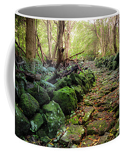 Waterfall Path Coffee Mug