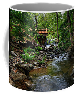 Waterfall With Wooden Bridge Coffee Mug