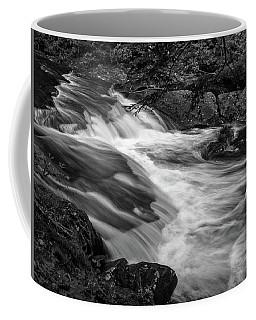 Waterfalls At Ricketts Glenn Coffee Mug