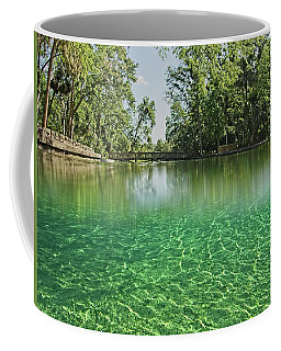Wekiwa Springs Coffee Mug
