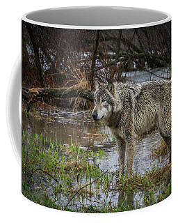 Wet Feet Coffee Mug