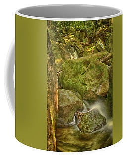 Wet Rocks Coffee Mug