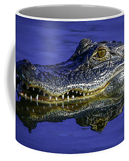 Coffee Mug featuring the photograph Wetlands Gator Close-up by Tom Claud