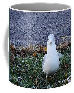 Whadda Are You Lookin At Coffee Mug