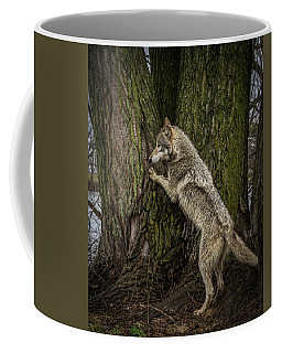 What's In There Coffee Mug