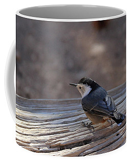 White Breasted Nuthatch Coffee Mug