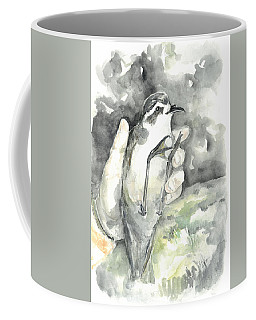 White-faced Storm-petrel Coffee Mug