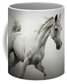Coffee Mug featuring the photograph White Horse On The White Background Equestrian Beauty by Dimitar Hristov
