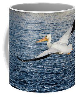 White Pelican Wingspan Coffee Mug