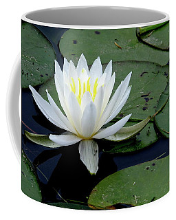 White Water Lilly Coffee Mug