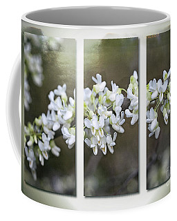 Whitebud Triptych Coffee Mug