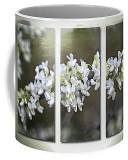Whitebud Triptych Coffee Mug