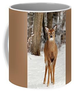 Whitetail In Snow Coffee Mug