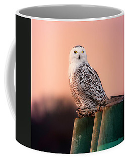 Who Are You Looking At? Coffee Mug