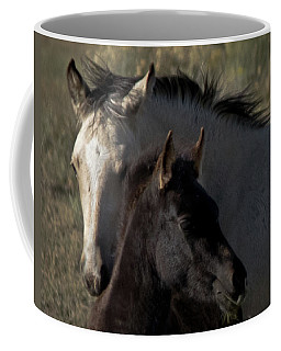 Coffee Mug featuring the photograph Wild Mustangs Of New Mexico 4 by Catherine Sobredo