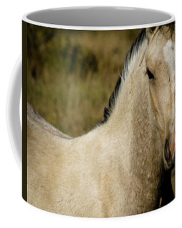 Coffee Mug featuring the photograph Wild Mustangs Of New Mexico 5 by Catherine Sobredo
