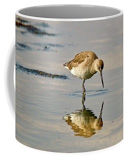 Willet Sees Its Reflection Coffee Mug