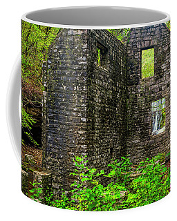 Coffee Mug featuring the photograph Window To The Waterfall by Andy Crawford