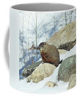 Winter Groundhog Coffee Mug