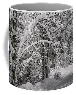 Coffee Mug featuring the photograph Winter In The Forest by Edmund Nagele