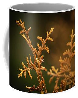 Winter's Hedges Coffee Mug