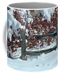 Coffee Mug featuring the photograph Wintery Fall by Ann E Robson