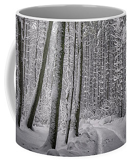 Coffee Mug featuring the photograph Wintry Forest Track by Edmund Nagele