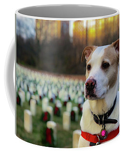 Coffee Mug featuring the photograph With Respect  by Lora J Wilson