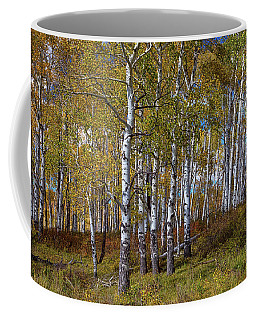 Coffee Mug featuring the photograph Wonders Of The Wilderness by James BO Insogna