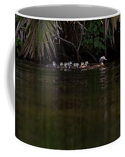 Wood Duck And Ducklings Coffee Mug