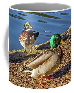 Wood Duck And Mallards Coffee Mug