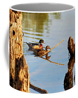 Coffee Mug featuring the photograph Wood Ducks by Debbie Stahre