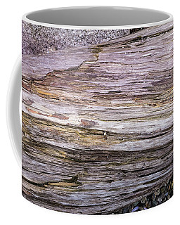 Coffee Mug featuring the photograph Wood Log In Nature No.28 by Juan Contreras