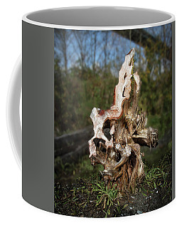 Coffee Mug featuring the photograph Wood Logs In Nature No. 1 by Juan Contreras