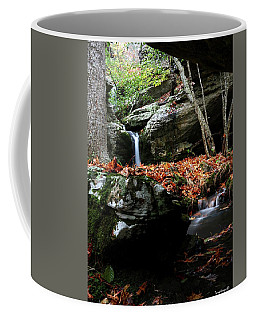 Yellow Cheek Valley Coffee Mug