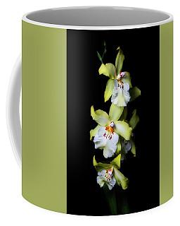 Yellow Cymbidium Coffee Mug