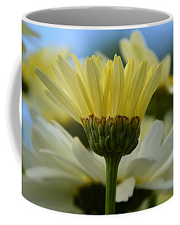 Coffee Mug featuring the photograph Yellow Daisy by SimplyCMB