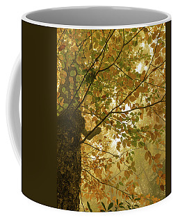 Yellow Fall Leaves - Blue Ridge Parkway Coffee Mug