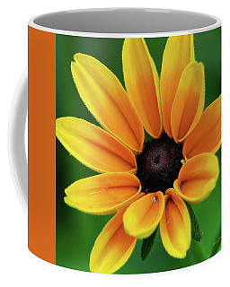Yellow Flower Black Eyed Susan Coffee Mug