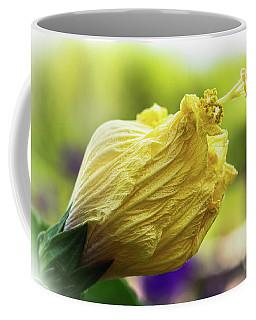 Yellow Mature Hibiscus  Coffee Mug